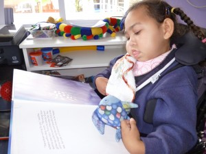 Figure 1 Kashyar, Rainbow Fish book and soft toy
