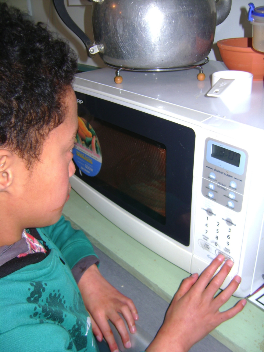 Figure 3 Familiarisation With The Microwave